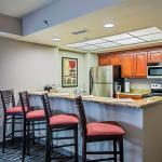 Contemporary King Penthouse Jacuzzi Suite