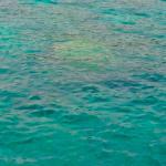 One of snorkeling spot