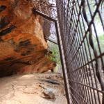 Dwelling place beneath a rock
