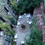 The beautiful outdoor garden