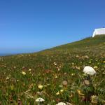 Cabo da Roca Maio/15