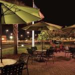 Hilton Garden Inn Warner Robins Foto