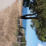 Parco Minerario dell'Isola d'Elba Foto
