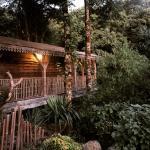 Cabane en bois : dépaysement assuré