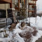 Mountain Spirit Resort Foto