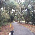 Nice paved path around park
