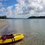 Kayaking in the Houhora Harbour