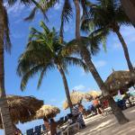 Divi Aruba Phoenix Beach Resort Foto