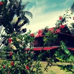Soluna Guest House Foto