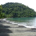 Photo de Playa Nicuesa Rainforest Lodge