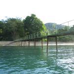 Foto de Playa Nicuesa Rainforest Lodge