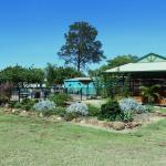 Foto van Pioneer Caravan Village