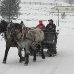 Sleigh ride nearby