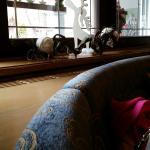 Alpin Wellness Hotel Kristiania Foto