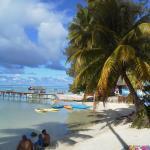 La plage de Tipaniers