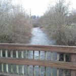Creek view 1 from bridge