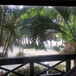 Foto de Palma Real Beach Resort & Villas
