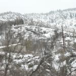 Medeu Skating Rink and Ski resort Foto