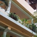 private garden balcony Caribbean Utila