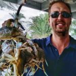 Blue crabs from the Gulf