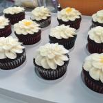 A variety of cupcakes available daily (while they last!)