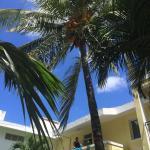 La Perla Holiday Apartments Foto