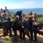 Fantastic Elephant trek with Elephants treated very well