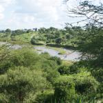 vue sur la rivière, nous avons pu observer une famille d'éléphants