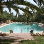 Photo de Hotel Mediterranee Thalasso Golf