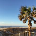 Photo de Hampton Inn & Suites Orange Beach
