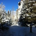 Blick in den Garten zum Hotel Walther