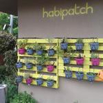 Habitat HQ Foto