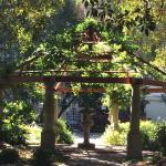 Company's Gardens Foto