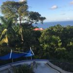 Pool with the view over Port Antonio
