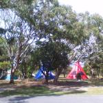 tepei tents