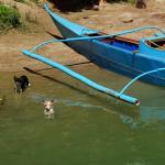 Photo de RIVER WATCH FLOATING RESTO