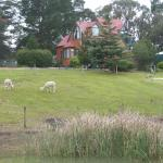 Valley View house with separate 1 & 2BR cottages