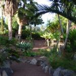 vue jardins