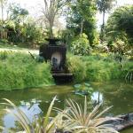 Brief Garden - Bevis Bawa Foto