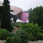 Vista del hotel sobre los viñedos