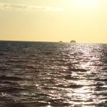Foto de Panache Sailing
