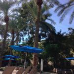 Foto di Hilton Scottsdale Resort & Villas