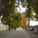Foto di Le mura di Lucca