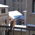 На балконе номера 5-го этажа