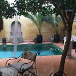relaxing by the little pool under the orange trees