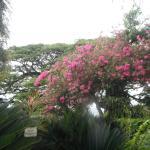 Photo de Pereira - Day Tours