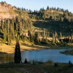Photo de Tipsoo Lake Loop