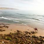 Photo de Surf Stay