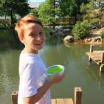 My son got some duck food at the entrance and enjoyed feeding the friendly ducks.
