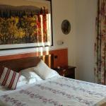 Photo of Hotel Sovestro